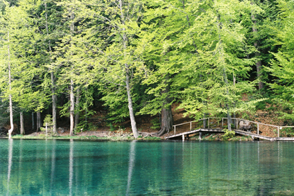 Le lac Vert, Julien Gory ©